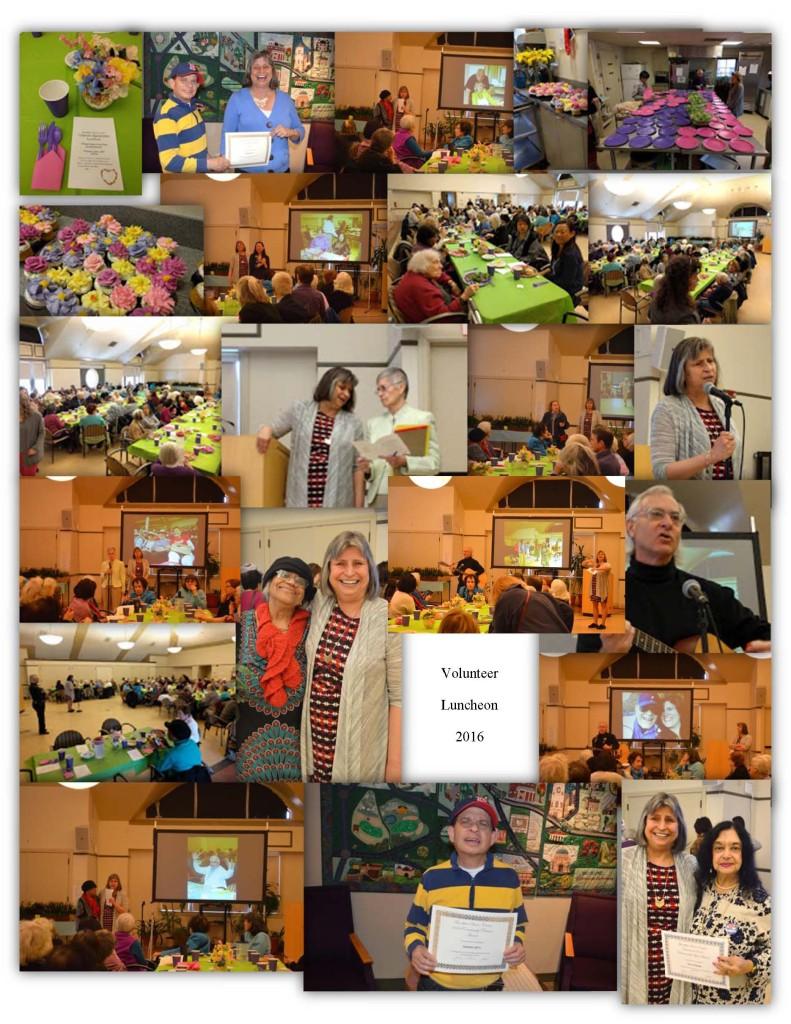 Volunteer Luncheon PDF 2016